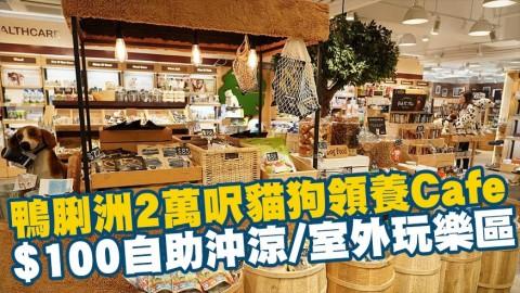 鴨脷洲2萬呎貓狗領養Cafe $100自助沖涼/室外玩樂區