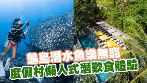 龜島潛水魚樂無窮 度假村懶人式潛歎食體驗