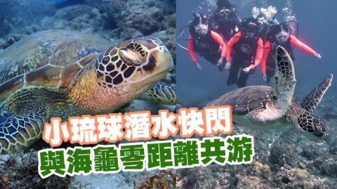 小琉球潛水快閃! 與海龜零距離共游