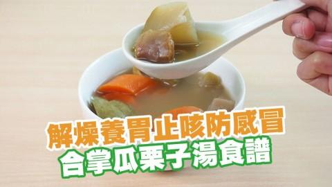 轉季滋潤湯水!解燥養胃止咳防感冒 合掌瓜栗子湯食譜
