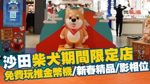 【沙田好去處】柴犬P仔期間限定店登場!賀年新春精品/影相位/免費玩推金幣機