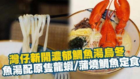 灣仔新開濃郁鯛魚湯烏冬 新鮮熬製魚湯配龍蝦/花膠泡飯/蒲燒鯛魚