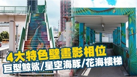 【香港周圍遊】4大特色壁畫影相位!巨型鯨鯊/星空海豚/花海樓梯