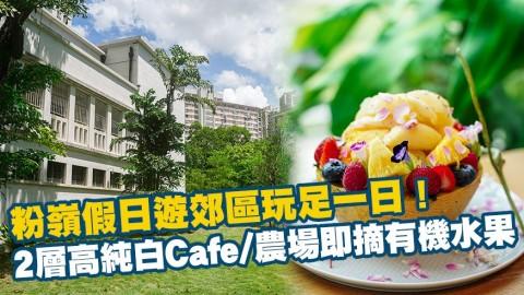 【香港周圍遊】粉嶺假日遊郊區玩足一日!2層高純白Cafe/農場即摘有機水果