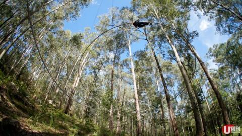 悉尼玩命體驗 高空歷奇+懸崖游繩