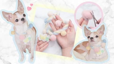 DIY棉花糖寵物頸圈!為毛孩製作獨一無二小手作!