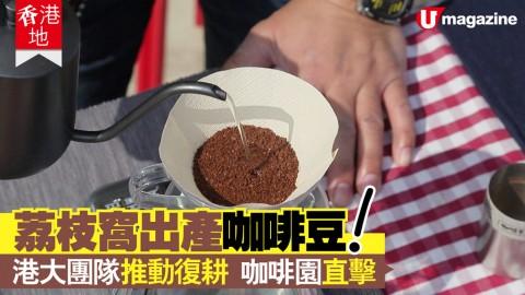 【香港地】香港都有出產咖啡豆?