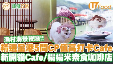 【Cafe推介2021】精選香港5間CP值高打卡Cafe!新開1000呎貓Cafe/棚屋Cafe/素食Cafe/天台Cafe