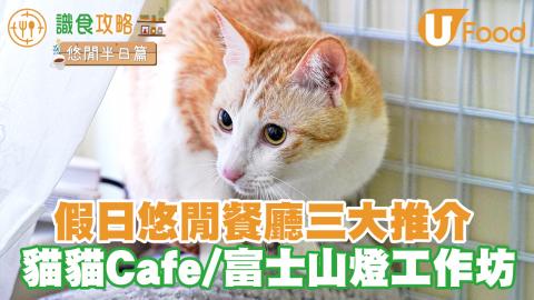 【香港室內假日好去處2021】推介香港3間打卡悠閒Cafe 有得食有得玩消磨時間! 貓貓Cafe/DIY富士山燈工作坊/花店咖啡店
