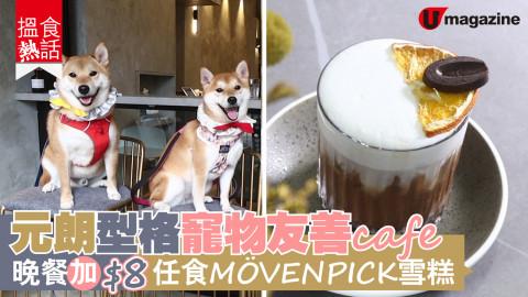【搵食熱話】元朗型格寵物友善 cafe 晚市套餐加 $8 任食 MÖVENPICK 雪糕