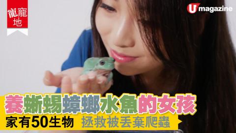 【寵寵地】唔單止唔怕爬蟲,呢個女仔仲要養咗差唔多50隻!