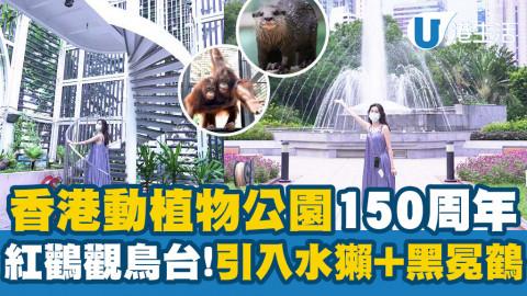 【中環好去處】香港動植物公園150周年活動開鑼!新駐園水獺+黑冕鶴/萬聖節打卡位